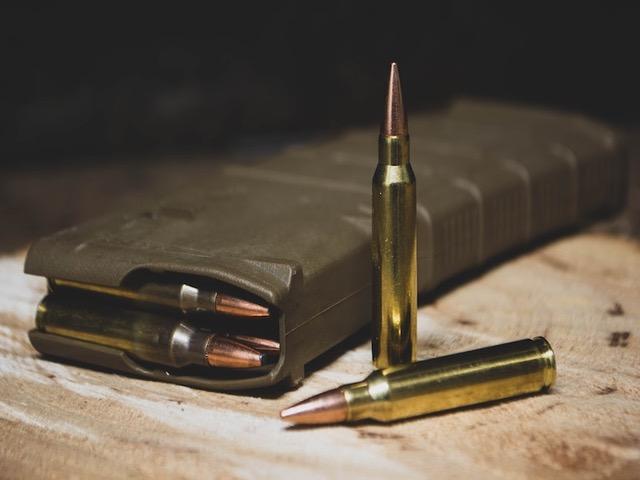 AR-15 Magazine and .223 Ammunition