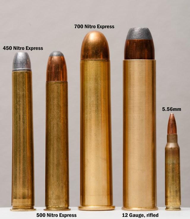 big game cartridges for african safaris
