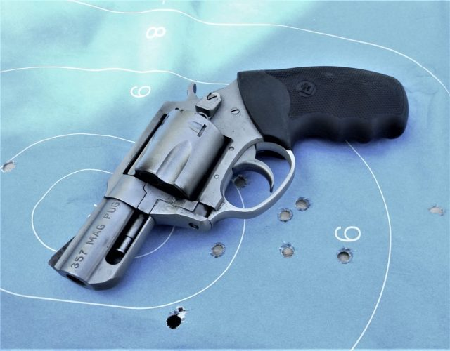 Charter Arms Bulldog on Target with holes
