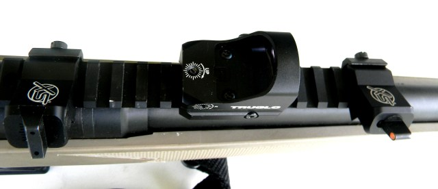 Red Dot Sight on Rifle