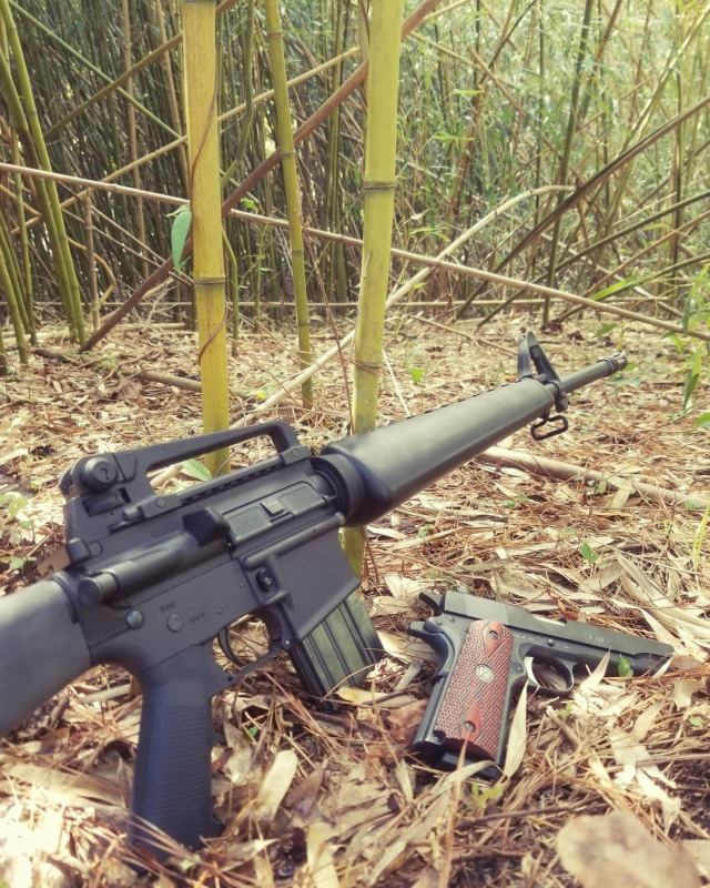 Old School AR-15 with Colt 1911 on woods floor