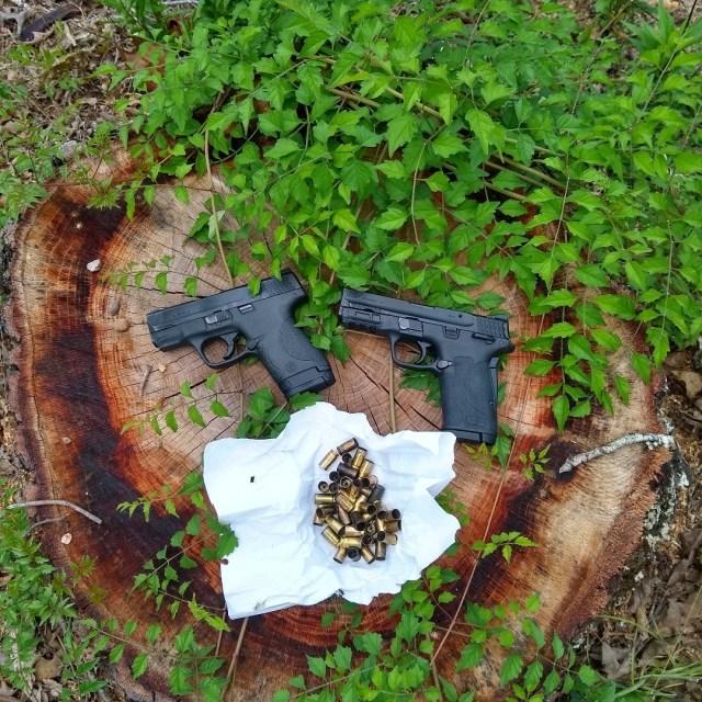 Two S&W pistols on tree stump