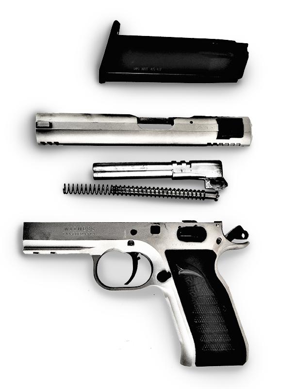 Field stripped EAA Witness handgun with magazine left profile