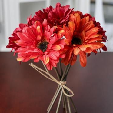 12 Best Flowers to Gift Your Beloved on Valentine's Day-gerberas