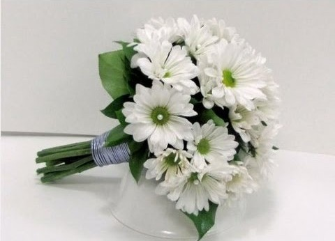 12 Best Flowers to Gift Your Beloved on Valentine's Day-white daisies