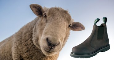 Good Farm Boots   What to look out for!