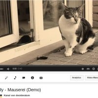 Nelly – Mauserei (Demo) – Video