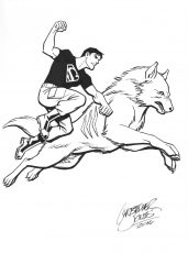 2 Character - Superboy & Wolf