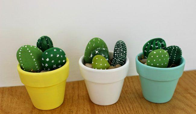 stone cacti in pots