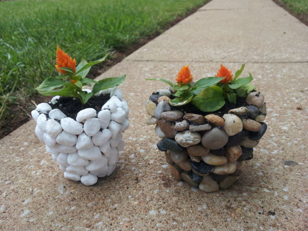 flower pot with stones
