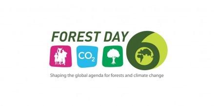 Logo Forest Day 6. Eko Prianto/ CIFOR