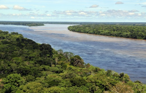 Aerial view of the Amazon Rainforest, near Manaus, the capital of the Brazilian state of Amazonas. Neil Palmer (CIAT).