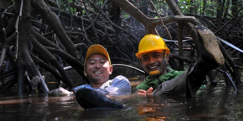 """Ilmuwan, Oki dan Sigit di """"taman bermain"""" mereka dalam penelitian hutan mangrove. Kate Evans/CIFOR."""