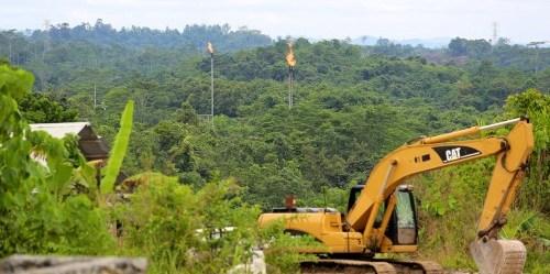 Guna memburu persediaan dunia akan pulp, kertas, batubara, nikel, timah dan kelapa sawit, lebih dari setengah hutan Indonesia ditebangi. Mokhamad Edliadi / CIFOR