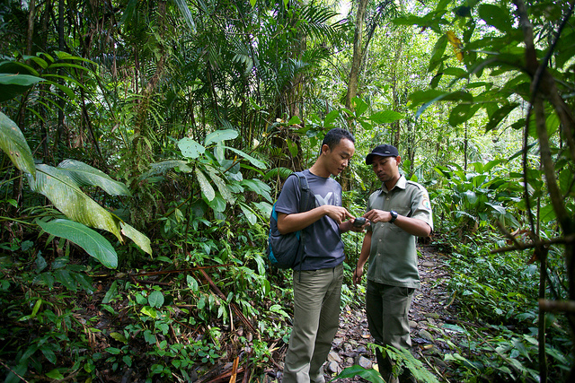 CIFOR reasercher, Age Kridalaksana and a national park officer discuss where to set up the camera trap. Mokhamad Edliadi/CIFOR