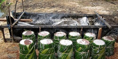 Sagu merupakan hasil hutan non kayu yang sejak dari dulu sudah dimanfaatkan sebagai sumber makanan. Di Maluku, Sagu tumbuh dengan sendirinya hutan-hutan rawa, pada daerah dataran rendah tumbuh di belakang hutan mangrove. Nining Liswanti/CIFOR