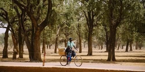 Para pembuat kebijakan sedang mengembangkan sebuah kerangka kerja untuk memastikan bahwa upaya konservasi hutan tidak merugikan masyarakat lokal yang berhak menerima insentif bantuan dari negara maju untuk membuktikan mereka telah mengurangi emisi karbon. CIFOR / Ollivier Girard