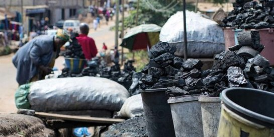 70 percent of households in Zambia use charcoal for cooking or heating