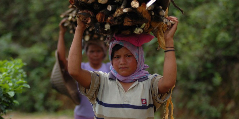 The reliance on burning biomass such as fuelwood, animal dung and crop waste for household energy creates risks and hardships that fall inordinately on women.