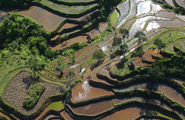 Bentang alam di sekitar Taman Nasional Halimun Salak, Jawa Barat, Indonesia. Foto: Kate Evans/ CIFOR.