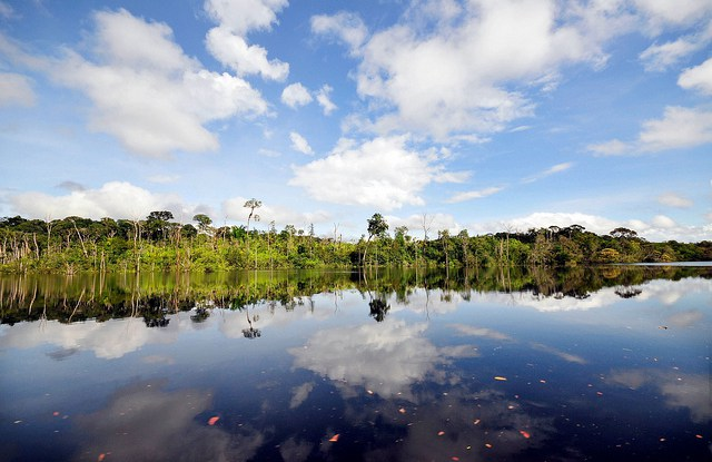 Amazon - Brazil, 2011.©Neil Palmer/CIAT