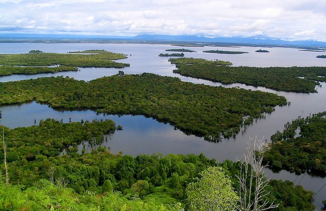 Lake Sentarum in West Kalimantan, Indonesia.   Photo by Yayan Indriatmoko for Center for International Forestry Research (CIFOR).