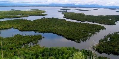 Danau Sentarum di Kalimantan Barat, Indonesia.   Foto: Yayan Indriatmoko /CIFOR