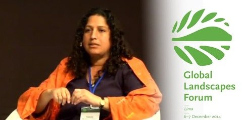 """Fabiola Muñoz-Dodero, Executive Director of the Peruvian National Forest and Wildlife Service: landscape decisions made by governments """"look a bit different when they trickle down."""""""