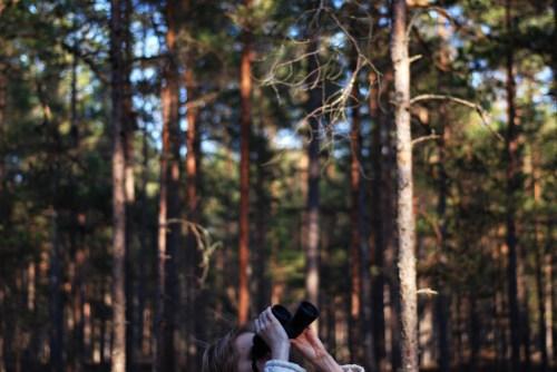 Pemantauan tutupan pohon dan kehilangan tutupan pohon dari 2001-2012 telah menghasilkan data baru yang berharga. Kredit foto: Vahur Puik