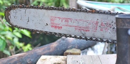 Berau, Kalimantan Timur memulai inisiatif pembangunan hijau dan menjadi subyek penelitian Pusat Penelitian Kehutanan Internasional (CIFOR). Wilayah ini merupakan tempat populasi orangutan terbesar di dunia, selain owa, bekantan, beruang berkalung dan lebih dari 80 tanaman langka. Foto James Maiden/CIFOR