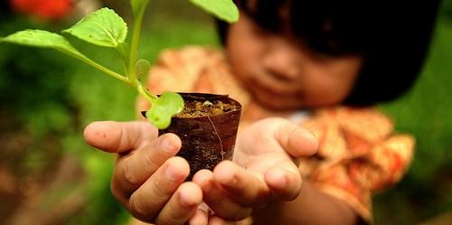 Soal kelangsungan hidup hutan adalah juga soal kelangsungan hidup manusia. Foto Ricky Martin/CIFOR