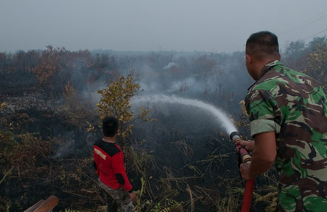 More than water: Research shows that efforts to end  Indonesia's fires must begin well before the match is lit.