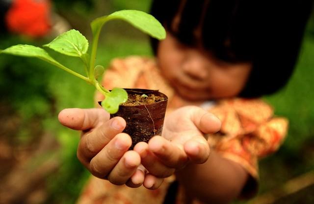 Los Objetivos de Desarrollo Sostenible (ODS) establecen la relación que existe entre la situación de nuestro planeta y los medios de subsistencia de las personas. Una reciente investigación evidencia que al atender los 17 ODS como una unidad, en lugar de manera aislada, se lograría mayor impacto.