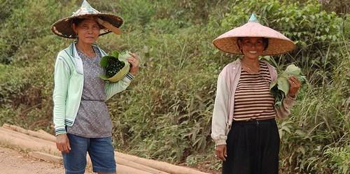 Norma tradisionl egaliter jender di Kalimantan Timur mulai berubah dalam dekade terakhir.