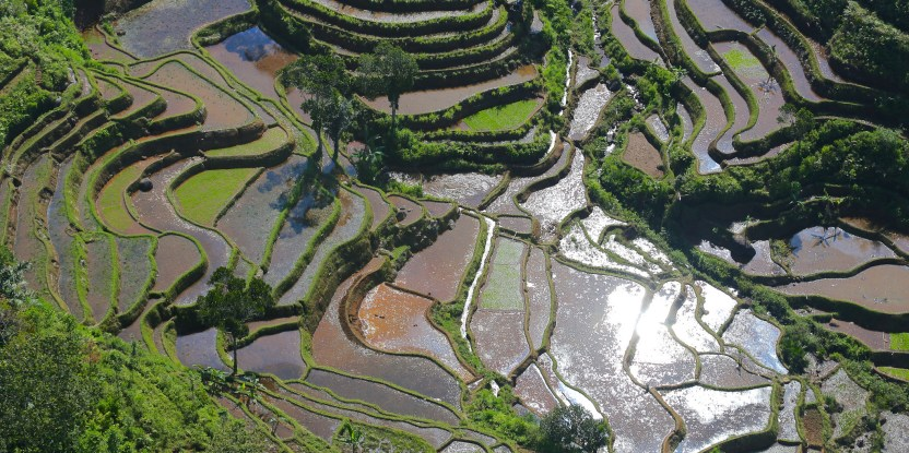 This aerial view over Halimun Salak National Park in West Java, Indonesia shows landscape details often lost on the ground.