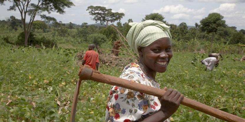 Farmer Nejjemba Teopista working in a communal garden at Kangulumira, Uganda.