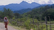 Obstacles to forest tenure reform deeply rooted in the past