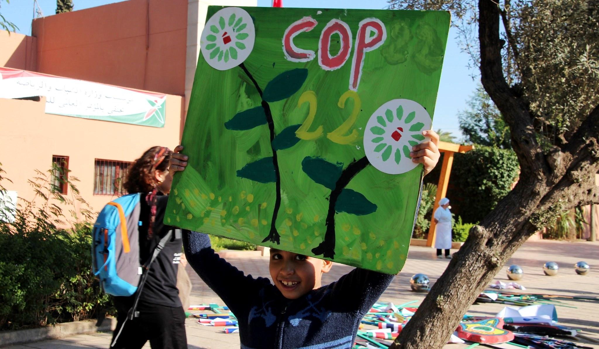 Cinco formas en que la investigación forestal contribuyó a los debates climáticos de Marrakech