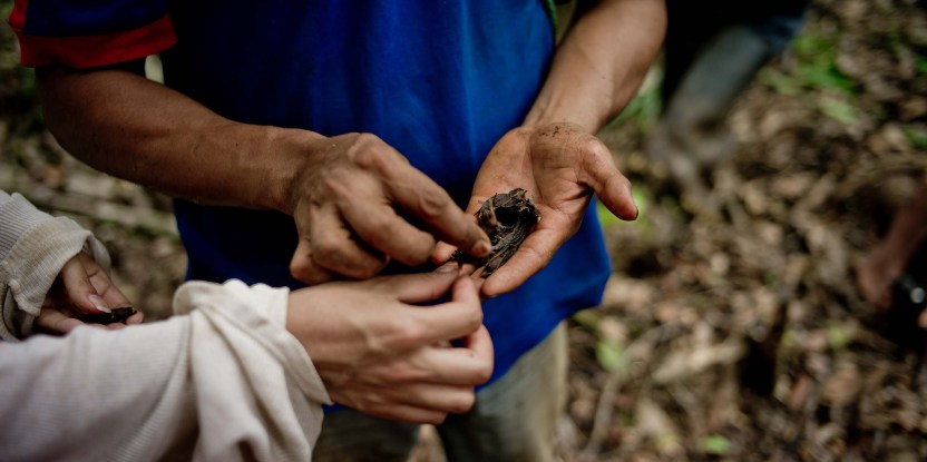 A CIFOR scientist (left) inspects Arenillo seeds collected by a Kichwa timber producer. These seeds will be replanted by the farmer to reforest his land in Napo Province, Ecuador. Tomas Munita/CIFOR Photo