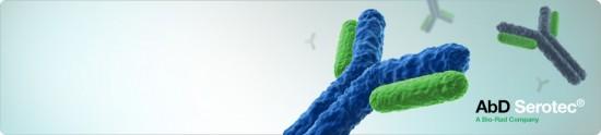 antibodies-image