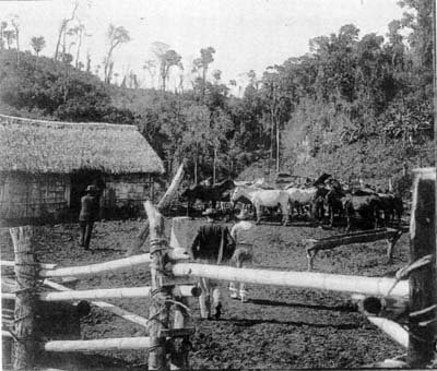 Propriedade Jesus Val (Puerto Iguazu)
