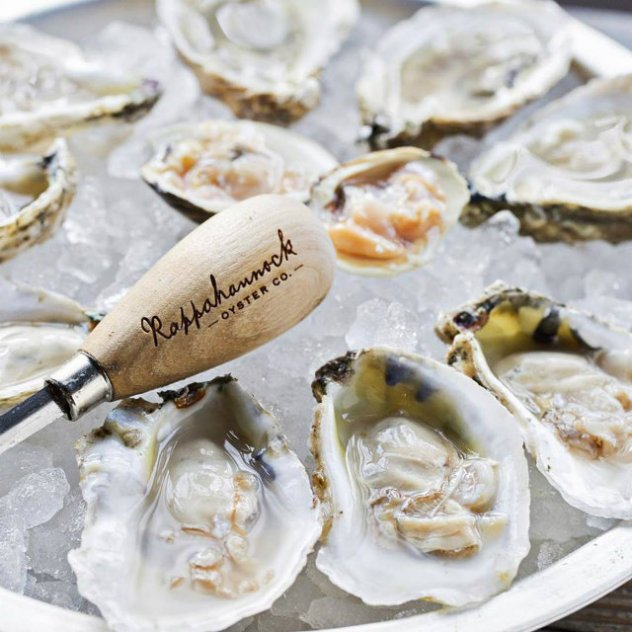 oysters in DC