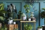 Redecora tu jardín o terraza con estos artículos que tenemos para ti