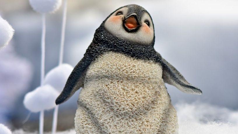 Por qué los pingüinos merecen nuestro amor