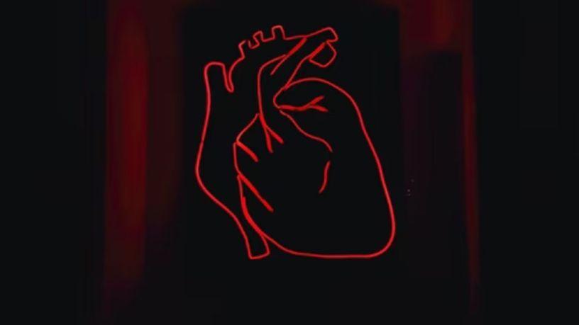 Día Mundial del Corazón: ¿qué dicen tus latidos?