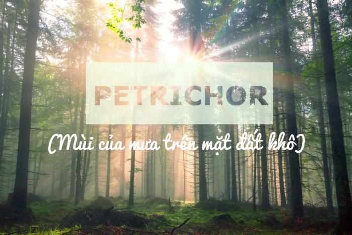 Petrichor - Mùi của mưa trên mặt đất khô