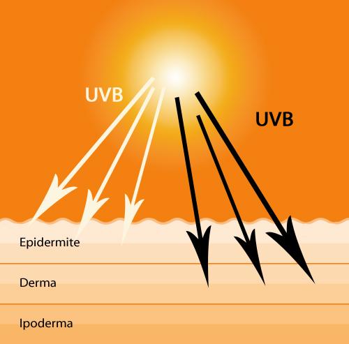 I filtri possono essere fisici o chimici  i filtri  fisici minerali inorganici sono dei veri e propri schermi ee8c59488ee8