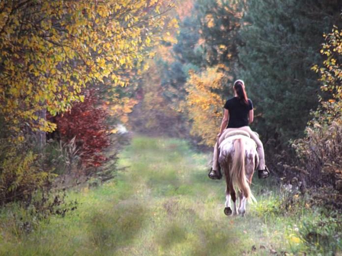 Ferragosto idee: gita a cavallo