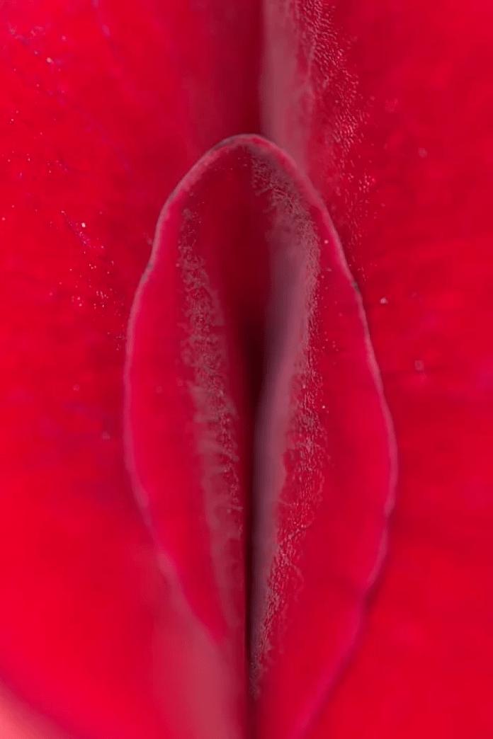 cliomakeup-yoni-massaggio-2-petalo-rosso
