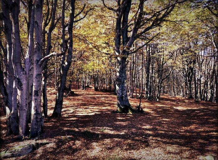 cliomakeup-viaggi-italia-autunno-8-liguria